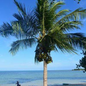 サムイ島チャウエンビーチの近況、最新地図2018年5月