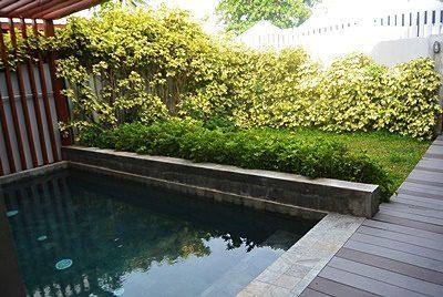 シナジー サムイ リゾートのプールヴィラ