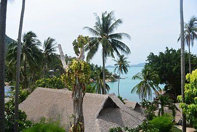 コーラル クリフ ビーチ リゾートのシービュールーム